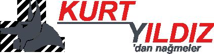 Kurt Yıldız Web Site Logo